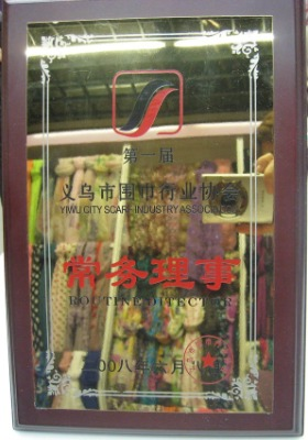Yiwu city scarf industry association routine ditector