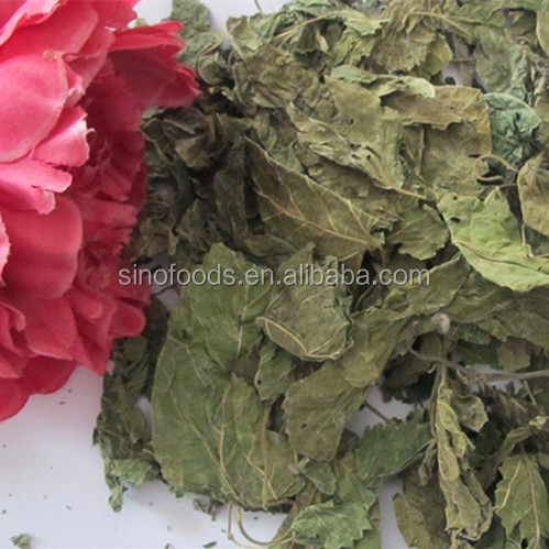 Sang Ye High Quality Dry Leaf Dried Mulberry Leaves