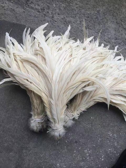 Plumas De Gallo Largas De 12 14 Pulgadas Venta Al Por Mayor Fábrica De China Buy Tiempo Gallo Plumas De Cola De Gallo Plumas De Pluma De Gallo Product On Alibaba Com