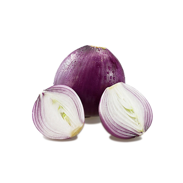 High Quality Premium Fresh Organic 50Mm Size Red Onion
