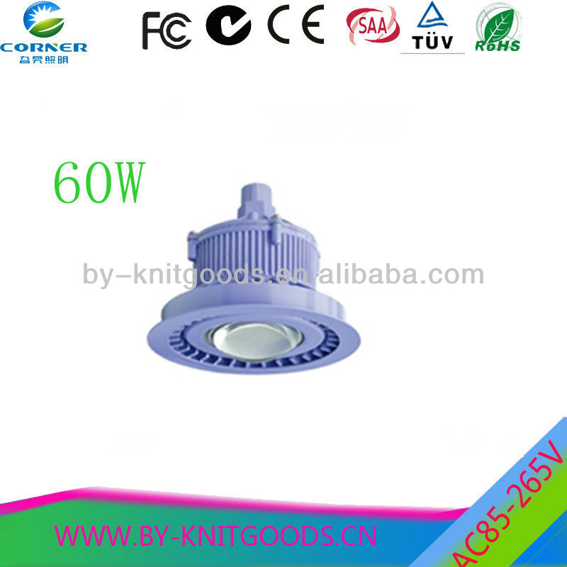 IP67 High power explosionproof induction light 60W
