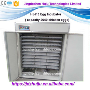 115-2640 egg incubator/poulty husbandry equipment/hatcher machine HJ-I13