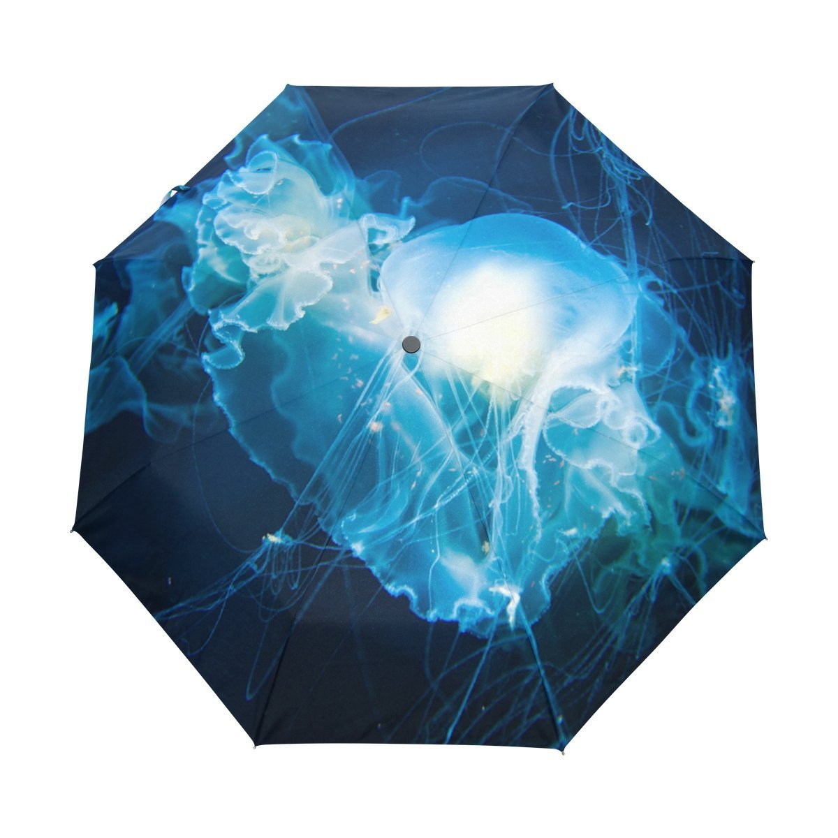 cd878ceeff81 Cheap Blue Foldable Transparent Umbrella, find Blue Foldable ...