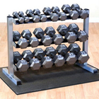 good quality cast iron 10kg gym dumbbell