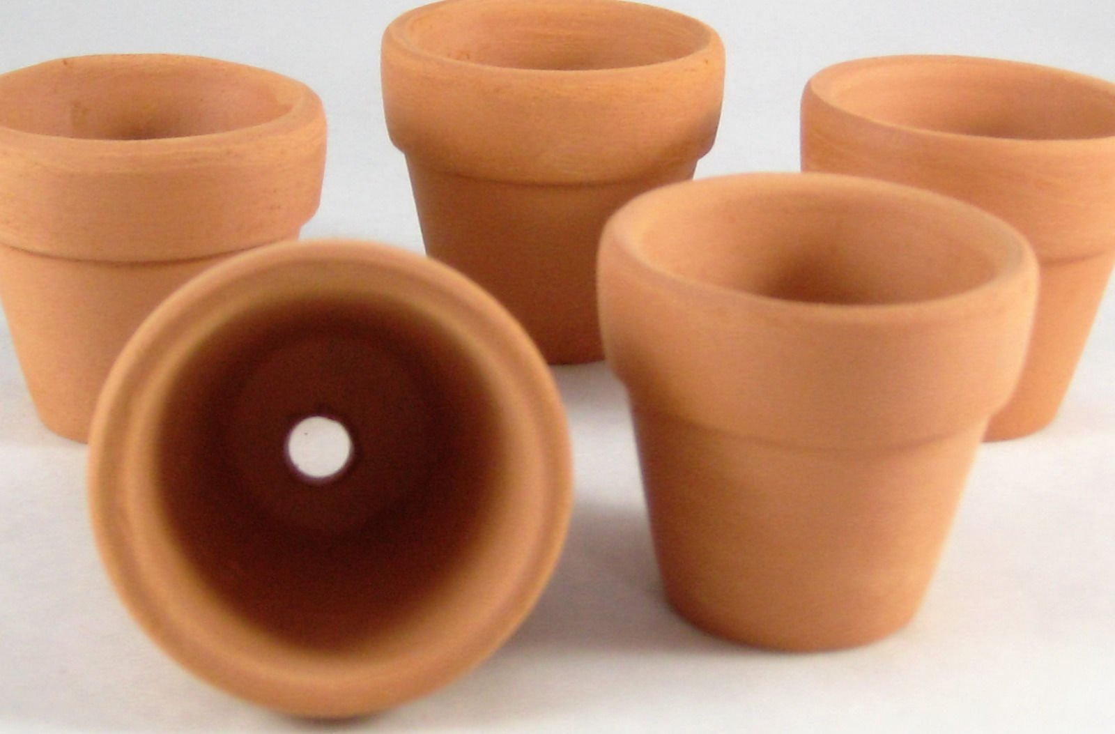 Cheap Small Terra Cotta Flower Pots Find Small Terra Cotta Flower