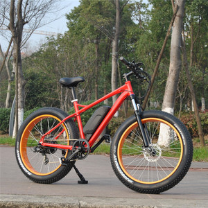 Aluminum Alloy 350W 500W 25km/H Fat Electric Bicycle sunny ebike