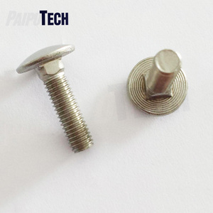 Customized High Quality DIN 603 Stainless Steel Carriage Bolt ,Special Screw,Special Head Screw