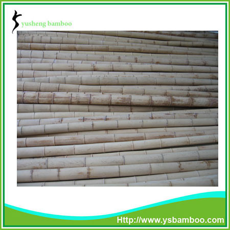 high quality garden bamboo poles