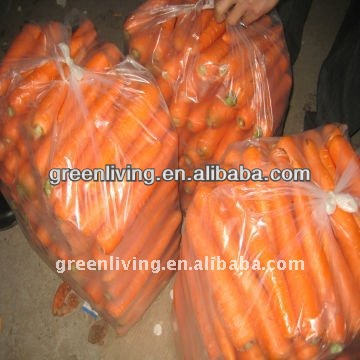 2014 Crop Fresh Carrot Import and Export ( Organic , Gap ,SGS)(S, M, L, LL)/factory direct supplier