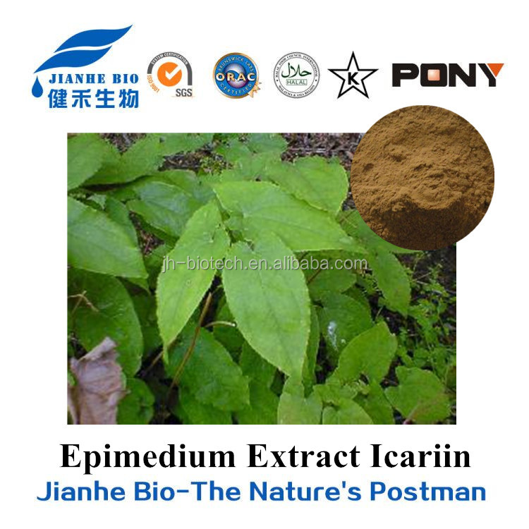 Natural Bulk Icariin 60% from Epidium Extract