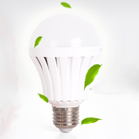 Economical High Efficiency Retrofit LED Light Emergency Bulb