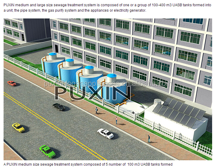 China Puxin High Reliable 400m3 Biogas Plant For Cow Manure/ Dung ...