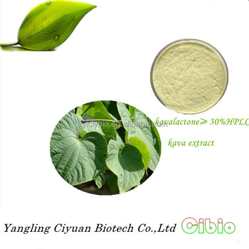 China whosale price 30% kavalactone kava extract,kava extract,kava root powder for anxiety and sleep