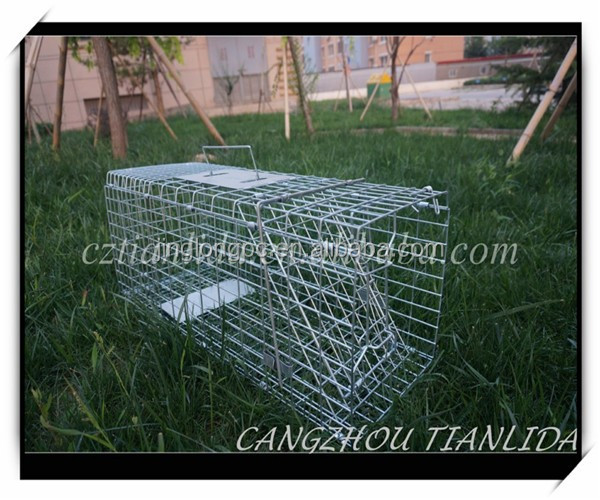 2016 Good quality small size animal trap and rabbit cat squirrel Trap Cage JL-2015 A