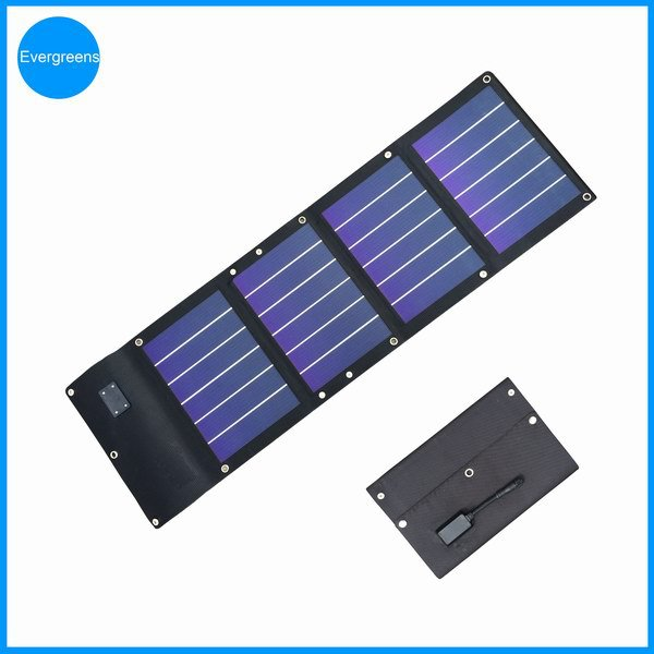 Hot sell 12W folding amorphous solar controller charger
