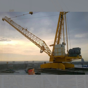 derricks crane Luffing crane without masts roof top crane on the top of building WD3520 3515 3015
