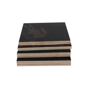Qingdao EVERISE Film Faced Plywood