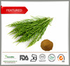 Plant Extract Horsetail Extract Powder silicon 7%