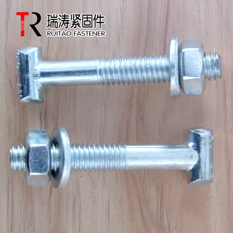 8.8 grade high quality T bolt M12