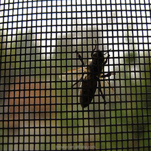 Fiberglass invisible mesh to keep fly bug insect out