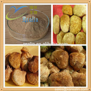 Lions Mane extract 30% 50% polysaccharides