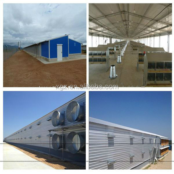 best price modern steel structure chicken house design for layers