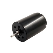 Coreless 10000 Rpm 17 Mm <span class=keywords><strong>12V</strong></span> <span class=keywords><strong>Dc</strong></span> <span class=keywords><strong>Motor</strong></span> Voor Rotary Tattoo Machine