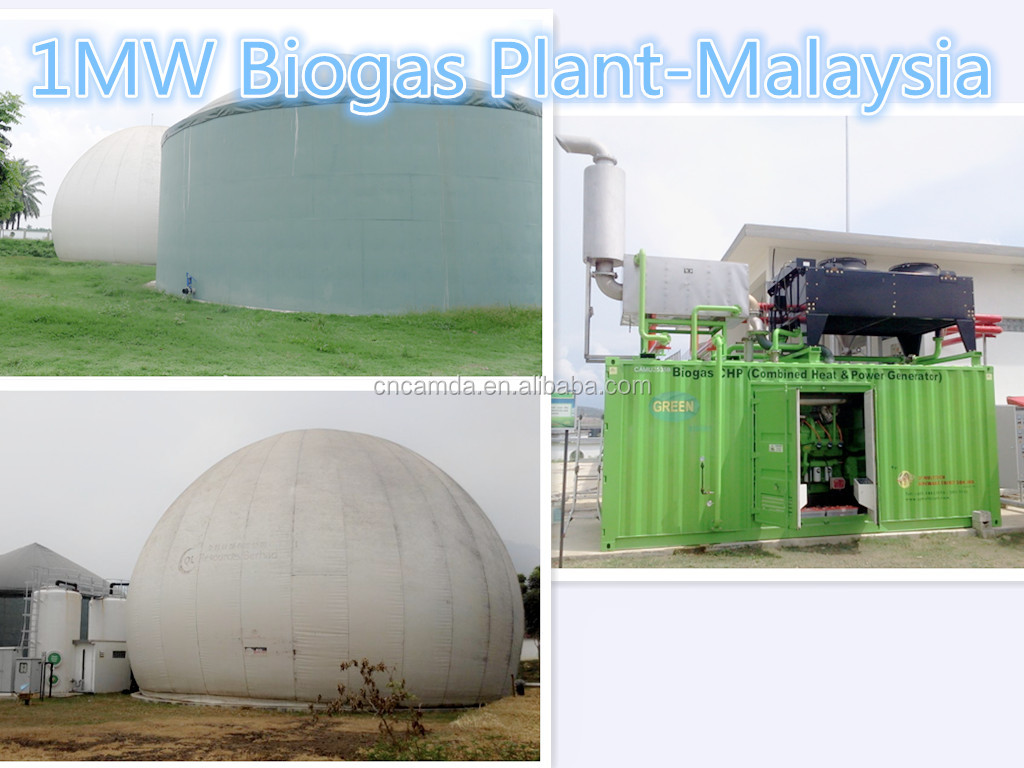 1MW New Energy Chicken Farm Waste Biogas Power Plant in Malaysia