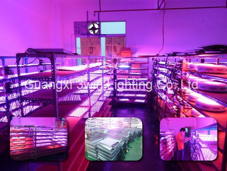 led light 270w UFO LED grow light for green house hydroponics system