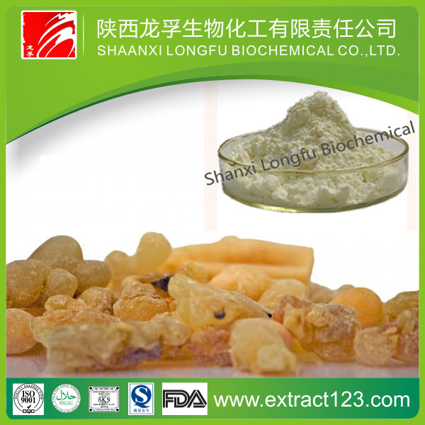 Health Care Produce Boswelia Extract For Acesodyne With Best Price