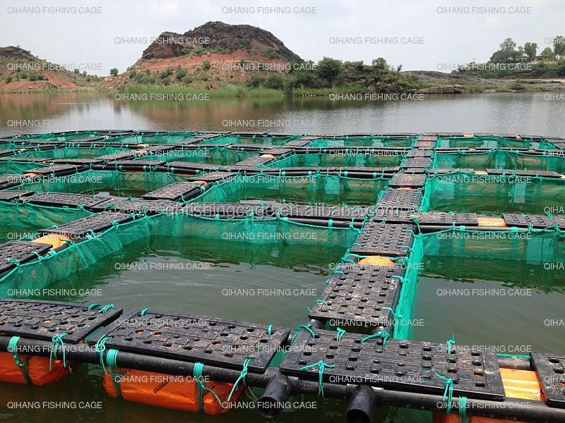 HDPE fish farming cages in lake