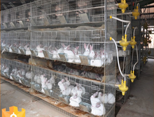 industrial breeding rabbit cage (factory)3 or 4 layer