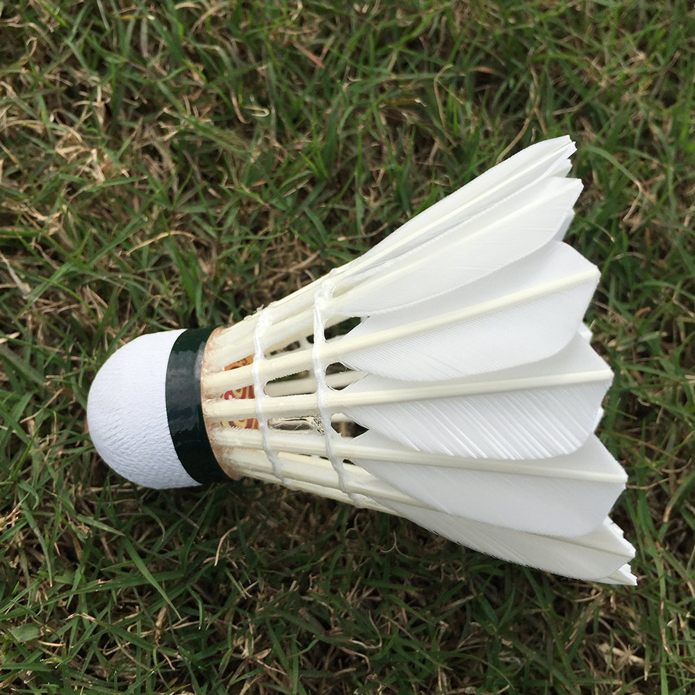 Sunny 2 Dozen Limit No Sporting Goods Badminton 3 Badminton Shuttlecocks Feather