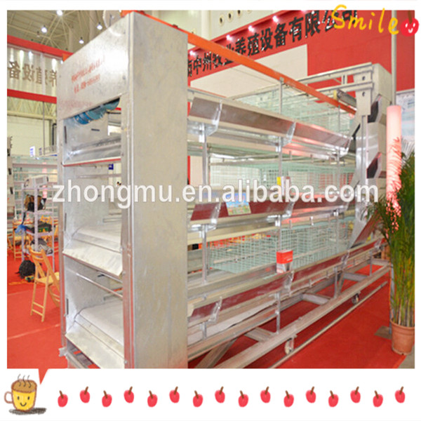 A type and H type automatic chicken layer cage /quail cage design