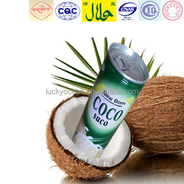 ready to drink healthy kelapa juice plant protein drinks