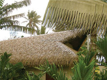 Natural looking synthetic palm leaves palmex thatch
