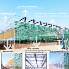 greenhouse multi span agriculture greenhouse,skeleton hot dip galvanized steel pipes outside cover with 5+6+5 double layer glass