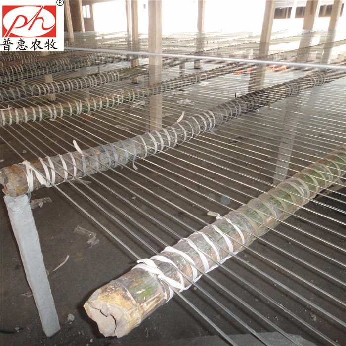 Breeding Equipment Poultry Farm Polyester Plastic Wire