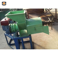 Popular 300KG Per Hour Palm Oil Extraction Machine Price/ Palm Fruit Pressing Machine