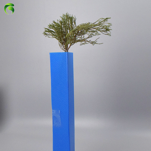 Green 2019 new light green pp corrugated tree protection guard