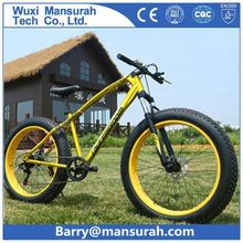 2014 Electric fat bicycle electric fat tire bike 26*4.0 tire mens beach cruiser(HP-E015)