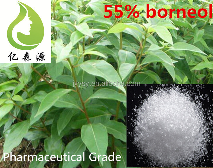 Plant Extract Natural Bulk Borneol Flake 55% Price With Free Sample