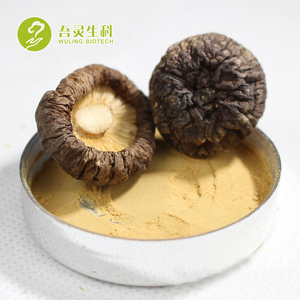 New Supply Top Grade Herbal Plant Black Shitake Mushroom Powder Dried Shiitake