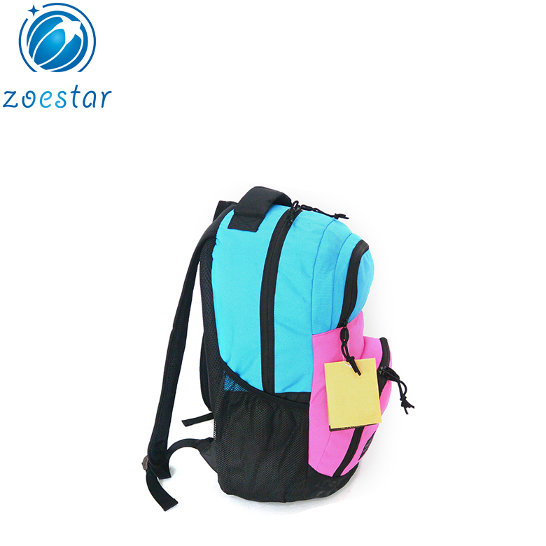 Travel Daily School Backpack for Two Laptops with Nametag Holder Organizers