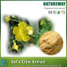 Ranunculus ternatus Thunb herbal extract, Cat's claw extract 3%, 4%, 5% Alkaloids