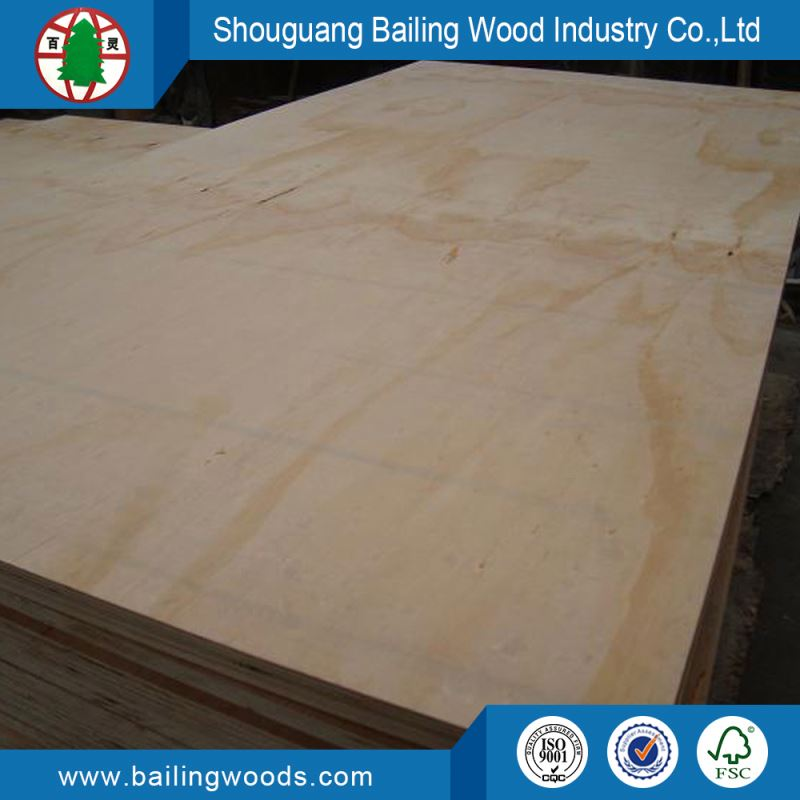 12mm Radiata 13-ply Boards Pine Plywood