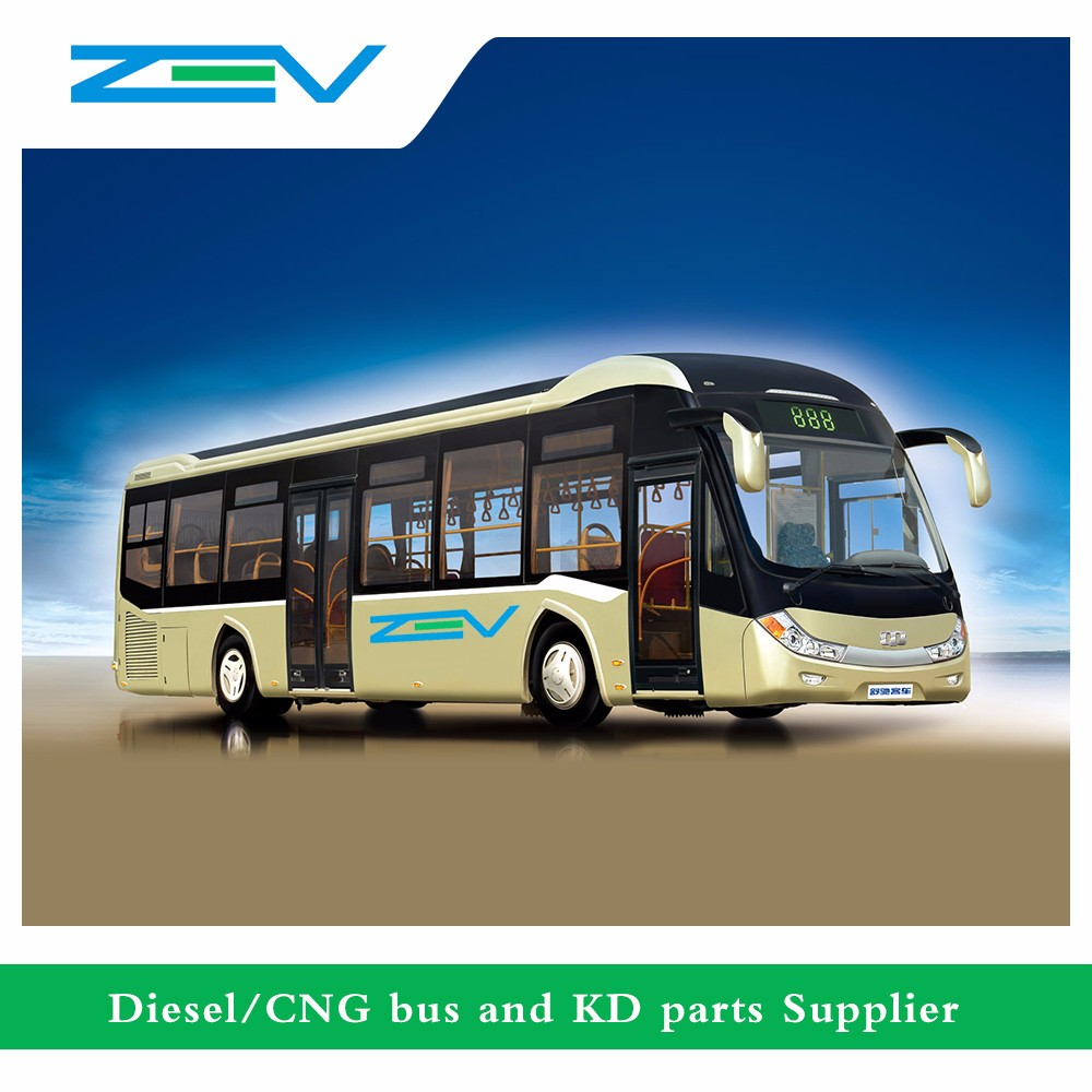 Zev Auto 8 Meters China Toyota Coaster Luxury Bus Good Price For ...
