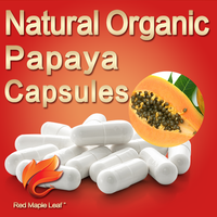 Slimming Products 500mg 1000mg Papaya Seeds Supplement Capsules