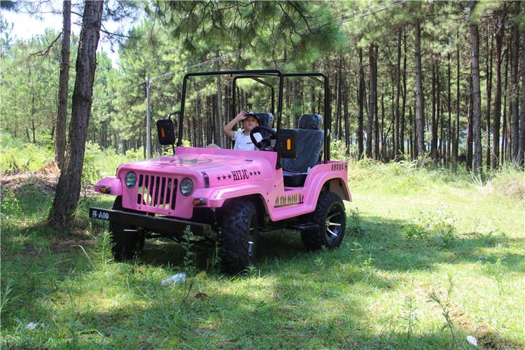 Gas 200cc Mini Jeep Willys 4x4 Utv For Kids Adults