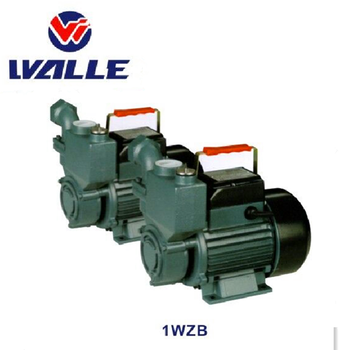 1WZB 1/2HP air-condition water pump